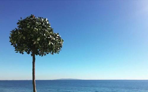 Love-to-B-by-the-sea-Malibu-CA